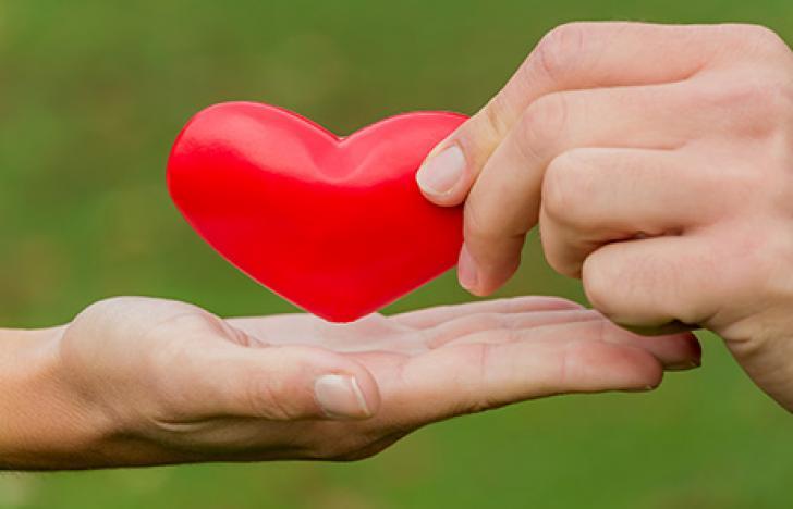Das menschliche Herz aus dem 3D-Drucker